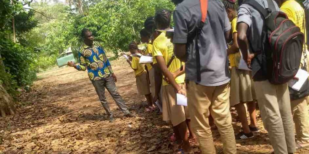 Tying a New Rope to an Old One: Developing an Environmental Education Curriculum in Benin