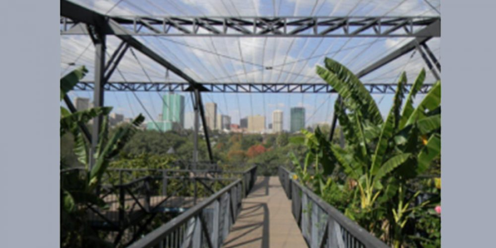 Urban Political Ecology in African Cities Workshop [Pre-notice]