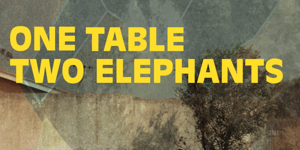 """Screening """"One Table Two Elephants"""" film at ACC International Urban Conference in Cape Town"""