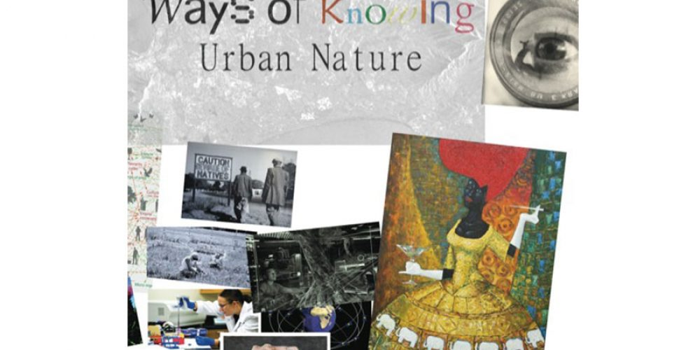"""An environmental film project in Cape Town: """"Ways of Knowing Urban Nature – The Film"""""""